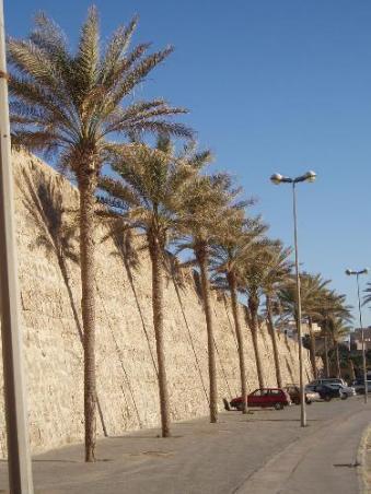 3381468-Medina_walls-Tripoli